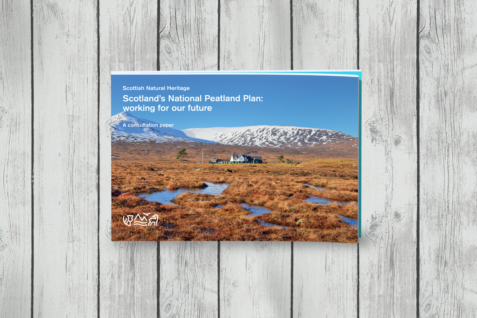 Scotland's National Peatland Plan report